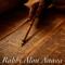 Weekly Torah Portion with Rabbi Alon Anava