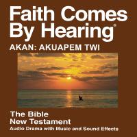 Akan: Akuapem Twi Bible (Dramatized) podcast