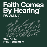 Rvwang Bible (Non-Dramatized) podcast