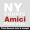 Amici: Third Branch Info & Insight