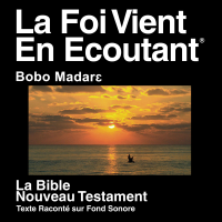 Bobo Madare Nord Bible (dramatisée) - Bobo Madare Northern Bible (Dramatized) podcast