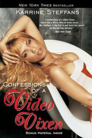 Confessions of a Video Vixen book