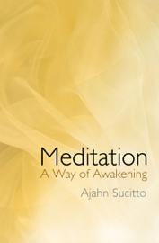 Meditation - A Way of Awakening book