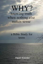 Why...A Bible Study for Teens book
