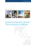Sustaining Vietnam's growth: The productivity challenge