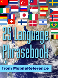 25 Language Phrasebook book