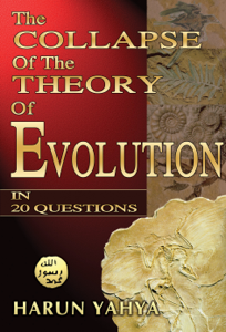 The Collapse of the Theory of Evolution in 20 Questions Book Review
