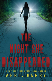The Night She Disappeared book