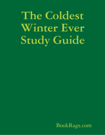 The Coldest Winter Ever Study Guide