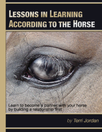 Lessons In Learning According to the Horse