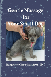 Gentle Massage for Your Small Dog