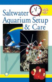 Quick & Easy Saltwater Aquarium Setup & Care