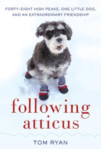 Following Atticus ebook