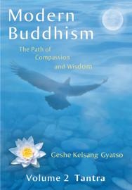 Modern Buddhism: Volume 2 Tantra book