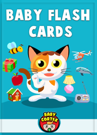Baby Flash Cards book