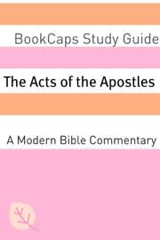 The Acts of the Apostles: A Modern Bible Commentary