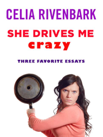 She Drives Me Crazy book