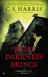 What Darkness Brings book