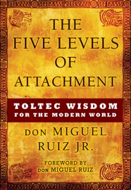 The Five Levels of Attachment PDF Download