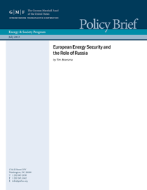 European Energy Security and the Role of Russia book