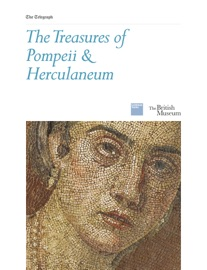 The Treasures of  Pompeii & Herculaneum - Mary Beard, Alastair Smart, Joanne Berry, Alex Butterworth, Ray Laurence, Bee Wilson, Tim Auld & Andrew Wallace-Hadrill