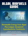 Algal Biofuels Guide Renewable Energy From Algae Macroalgae Seaweed Cyanobacteria Feedstocks Cultivation Harvesting Extraction Conversion Distribution And Utilization