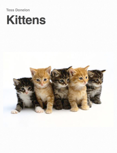 Kittens Book Review