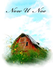 Now U Noe book