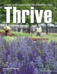 Thrive 2013