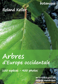 Arbres d'Europe occidentale