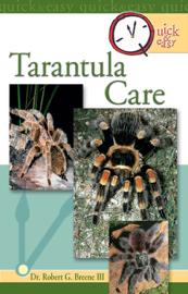 Quick & Easy Tarantula Care
