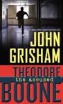 Theodore Boone The Accused