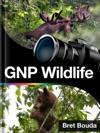 Glacier National Park - Wildlife