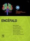 Encfalo