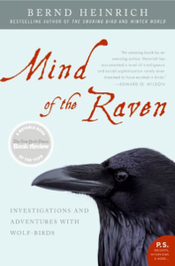 Mind of the Raven ebook