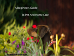 A Beginners guide to pet and home care