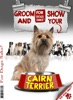 Groom And Show Your Cairn Terrier