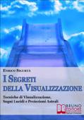 I Segreti Della Visualizzazione Book Cover