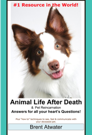 Animal Life after Death & Animal Reincarnation- Everything You Always wanted to Know! After-Death Do Animals Go to Heaven? book