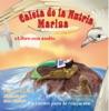 Caleta de la nutria Marina