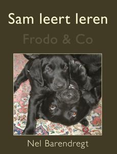 Sam leert leren Boekomslag