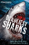 Discovery Channels Top 10 Deadliest Sharks