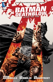 Batman Deathblow After The Fire