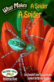 What Makes: A Spider a Spider