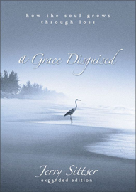 A Grace Disguised book