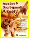 The How-To Guide To Curing Dog Separation Anxiety