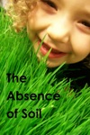 The Absence Of Soil