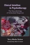 Clinical Intuition In Psychotherapy The Neurobiology Of Embodied Response Norton Series On Interpersonal Neurobiology