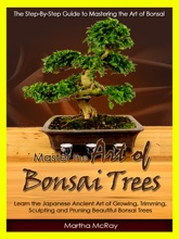 Master The Art Of Bonsai Trees