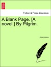 A Blank Page A Novel By Pilgrim